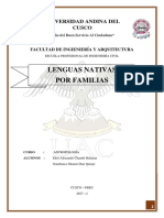 Lenguas Nativas.docx