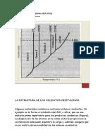Estructuras cristalinas del sílice.docx