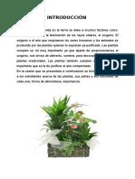 24467022-SESEION-DE-APRENDIZAJE-LA-PLANTA.doc