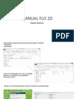 MANUAL FLO 2D_1