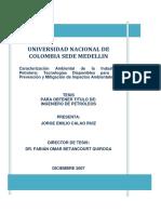 15646742_2009.pdf