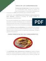 La Importancia de Los Carbohidratos