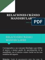 relaciones craneo mandibulares