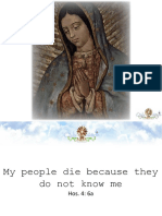 Guadalupe, Apostles of Love English (2hrs)