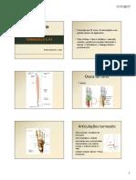 20171117_164649_Aula-10-Tornozelo-Pe.pdf