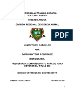 Darío Mixtega Rodríguez Laminitis