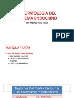 4°TEMA - FISIOPATOLOGIA DEL SISTEMA ENDOCRINO - DR. OFTALMÓLOGO (1)