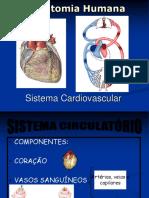 Cardio vascular 2017.ppt