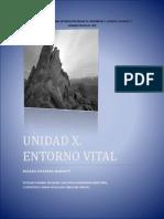 Unidad 10. Entorno Vital