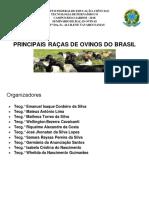 0_Ovinos Raças completo.pdf