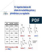 Sintesis de Nucleotidos 2