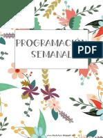 Varios Modelos de Programación Semanal