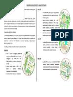 Descripcion Del Proyecto Arquitectonico