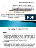 Desenvolvimento Neuropsicológico - Da Infância à Velhice