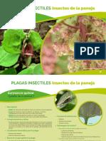 2_parte_a-i5519s.pdf