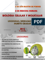 06 Lisosomas,Degradacion,Muerte Heli