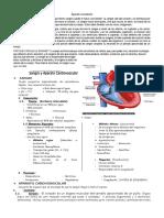 IV BIM - 5to. Año - Bio - Guía 2 - Sangre y Aparato Cardiova