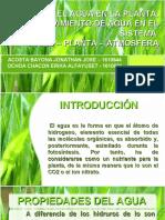 elaguaenlaplanta2-120811190104-phpapp01.pdf