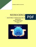Neurociencias 1