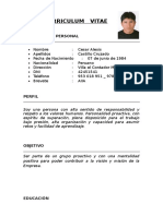 CURRICULUM CESAR.doc