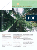 Cap 3 Introduccion a la estructura de las plantas.pdf