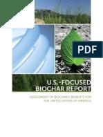 Biochar Report Lowres