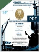 Informe Topo I