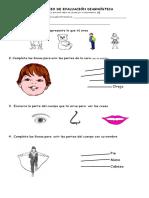 24104670-Evaluacion-Diagnostica-Primer-grado(1).doc