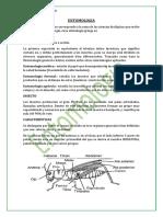 entomologia chirinos.docx