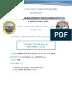 ROCAS ORNAMENTALES GTRABAJO DE PLACERES.docx