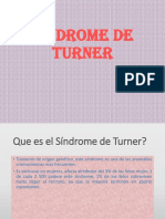 s Indro Turner 1