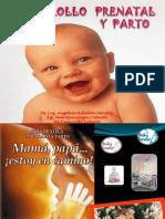 1.Desarrollo Prenatal