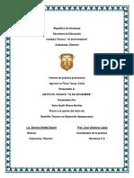 informe final 18 de noviembre.docx