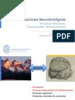 2.1.+Neurobiología+Pro+Afect+_Santander_