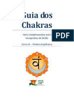 Guia Dos Chakras - Chakra Esplenico