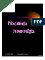 Fenomenologia Psicopatologica