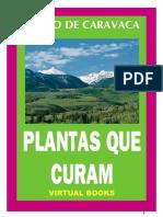 plantas que curam.pdf