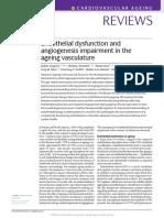 Review Disfuncion Endotelial