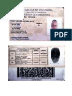 Licencia Fredy