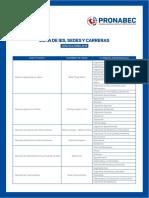 bpa_lista_ies_carreras (1).pdf