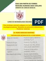 2.- SEGUNDA SEMANA.pdf