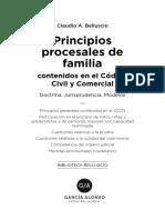 belluscio-principios-procesales-en-familia.pdf