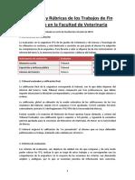 Evaluación y Rúbrica del TFG.pdf
