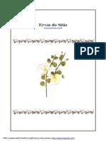 Ervas do Sítio.pdf