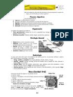 ANATOMIA - CAP (5).pdf