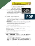 10 CAPITULO X.pdf