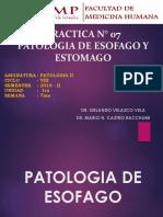 324170789 Lab Patologia II Esofago y Estomago