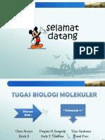 rekayasa genetik ppt.pptx
