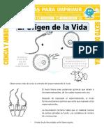 Ficha-El-Origen-de-la-Vida-para-Sexto-de-Primaria.doc