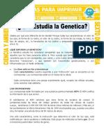 ficha-Que-Estudia-la-Genetica-para-Sexto-de-Primaria.doc